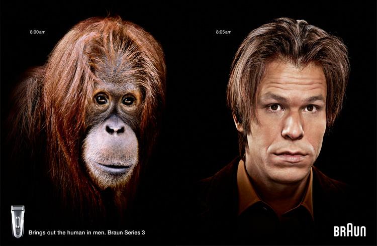 реклама бритвы с орангутаном
